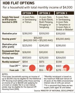 hdb-flat-options